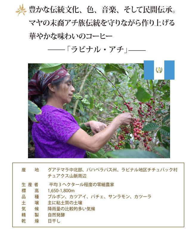 achi001-2.jpg
