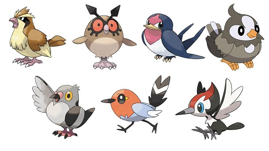 birdpokemon.jpg