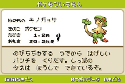 pokemon-kinogassa.jpg