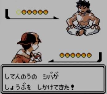pokemon-shiba_20201226112011fd7.jpg