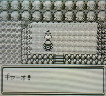 pokemon_20201206112146660.jpg