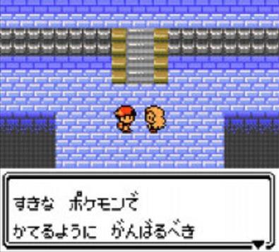 pokemonkingin_202011111029219dc.jpg