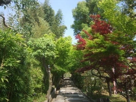 maruyama10.jpg