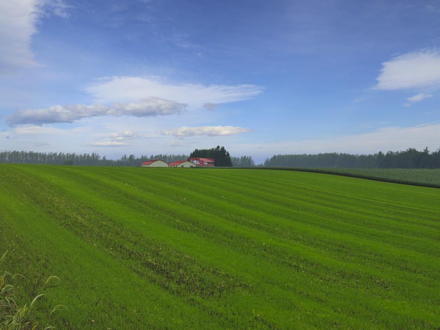 十勝平野の赤屋根の農場