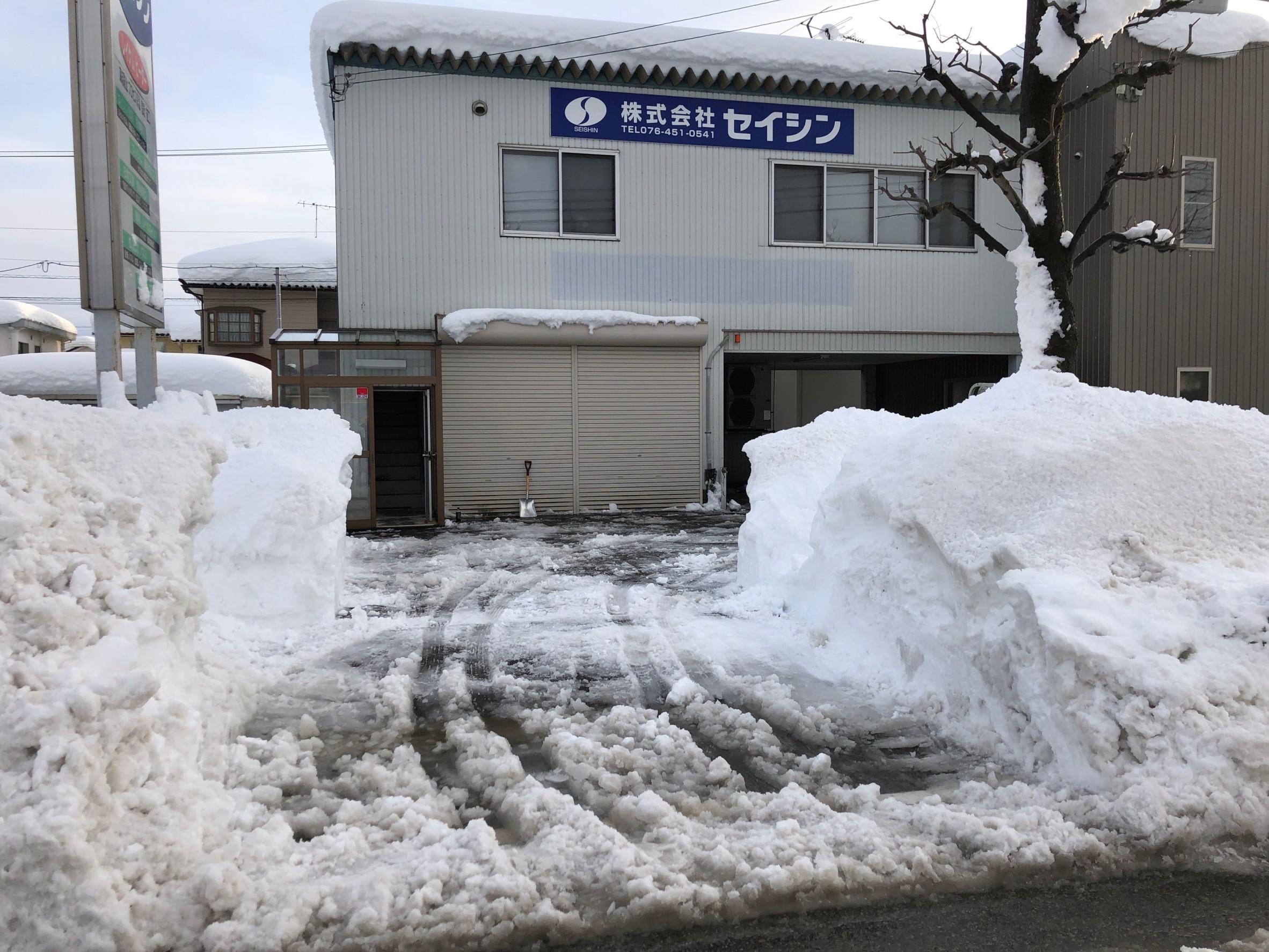 1月11日の除雪の様子