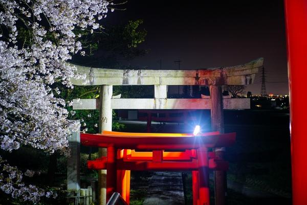 210401 tane shrine 02