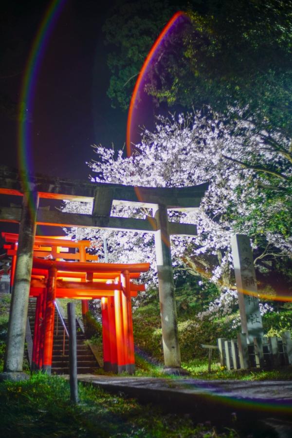 210401 tane shrine 03