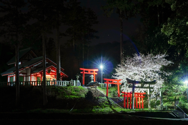 210401 tane shrine 01