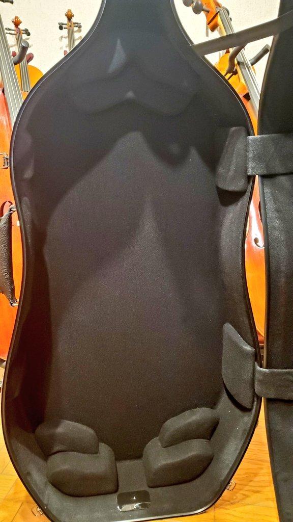 チェロケース イーストマン カーボン 内装背面