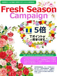 2020.6 Fresh Seasonキャンペーン ポスター (2)