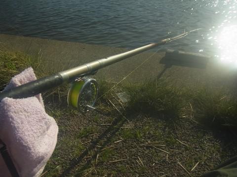 ミャク釣り