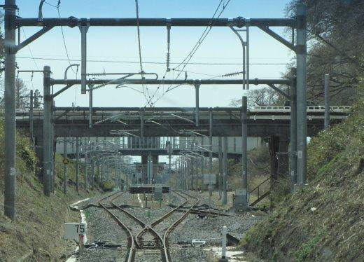 200372.jpg
