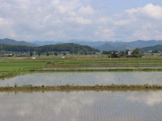 200741.jpg