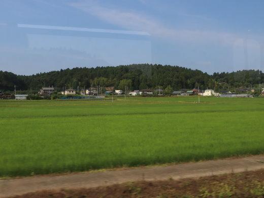 200756.jpg