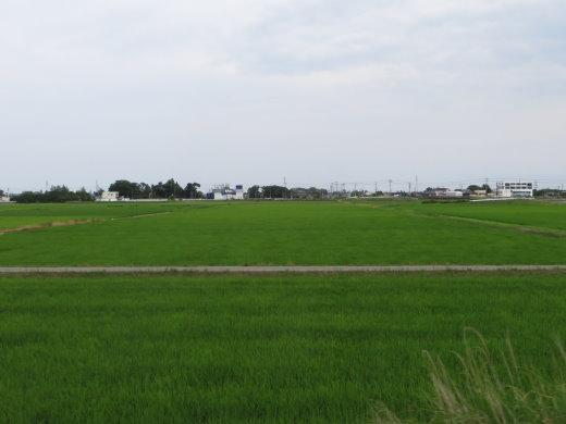 200759.jpg