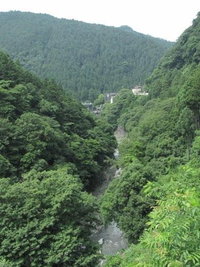 200860.jpg