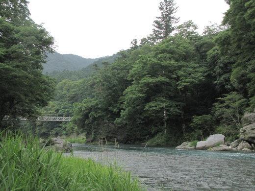 200876.jpg