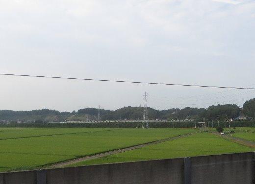 201032.jpg