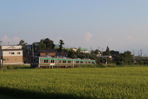 201061.jpg