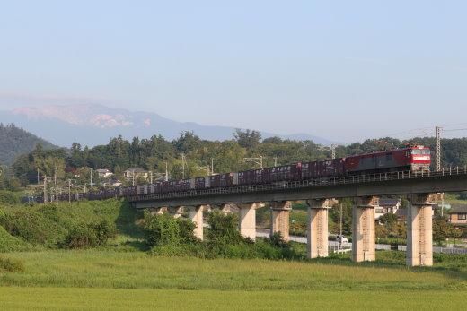 201075.jpg