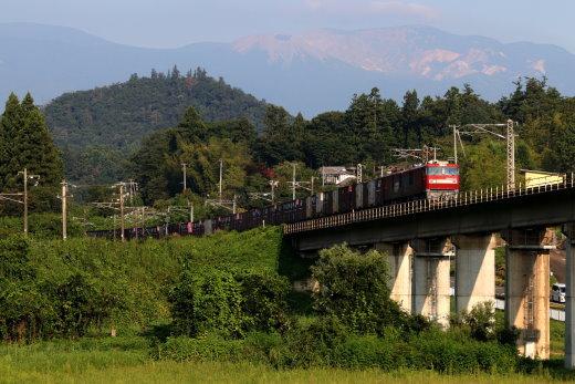 201076.jpg