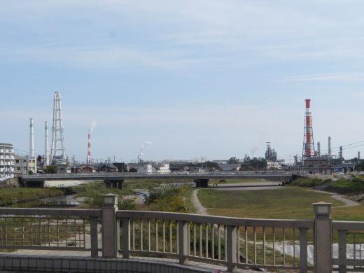 201161.jpg