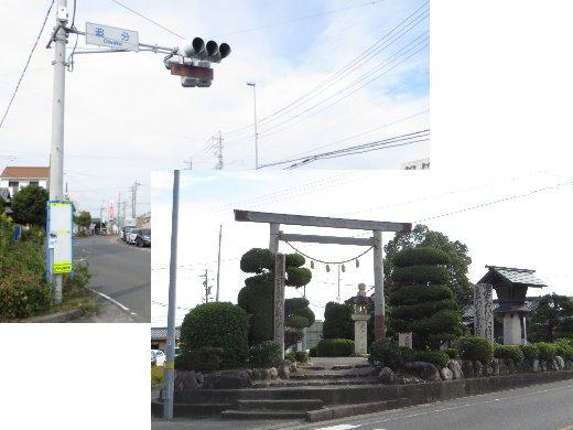 201171.jpg