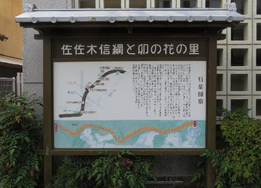 201181.jpg