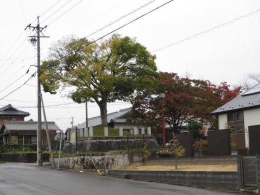 20119G.jpg