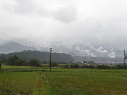 201229.jpg