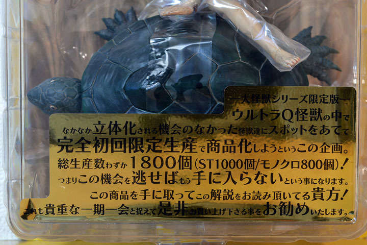 大ガメ ガメロン02