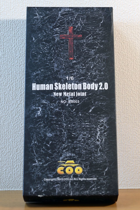 Human Skeleton Body 20 0001