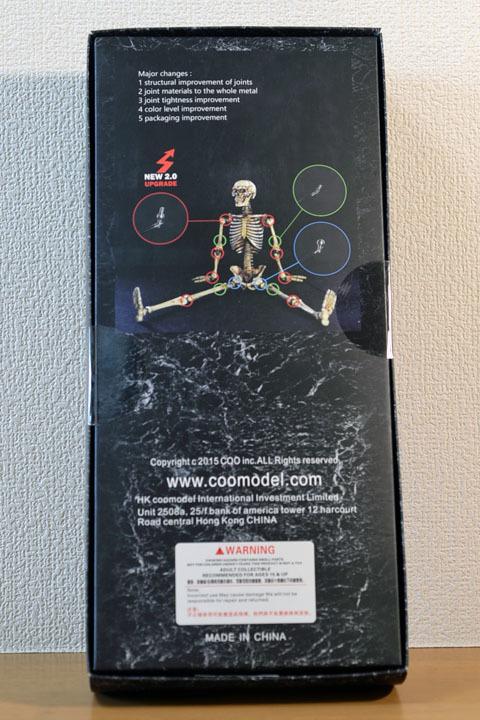 Human Skeleton Body 20 0002