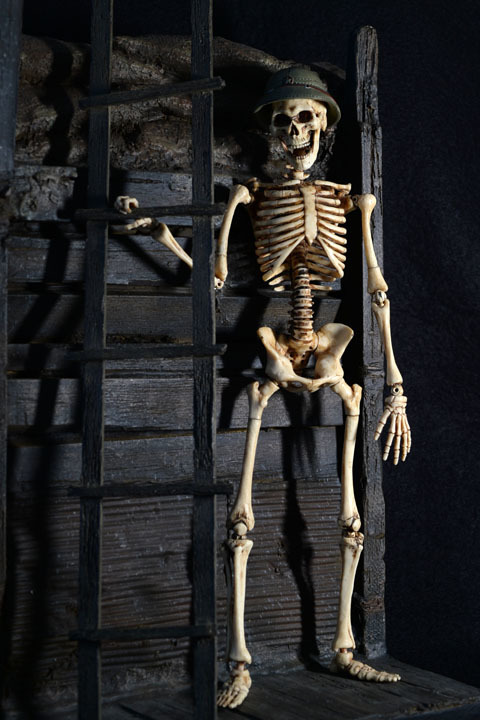 Human Skeleton Body 20 0019