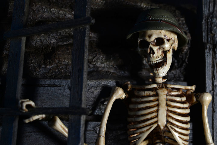 Human Skeleton Body 20 0020