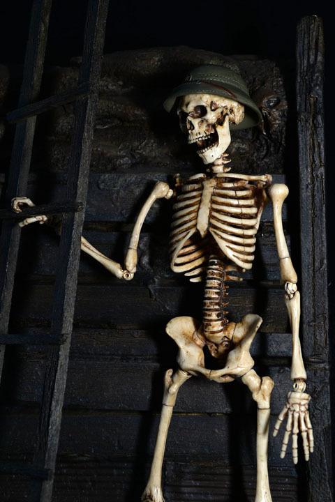Human Skeleton Body 20 0021
