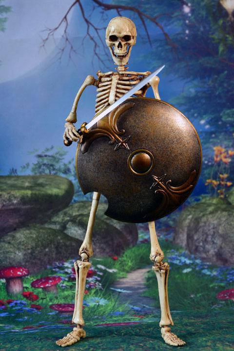Human Skeleton Body 20 0023