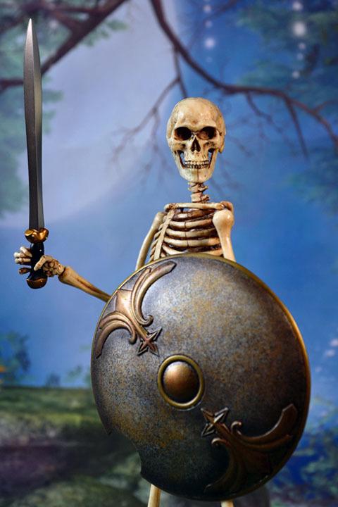 Human Skeleton Body 20 0024