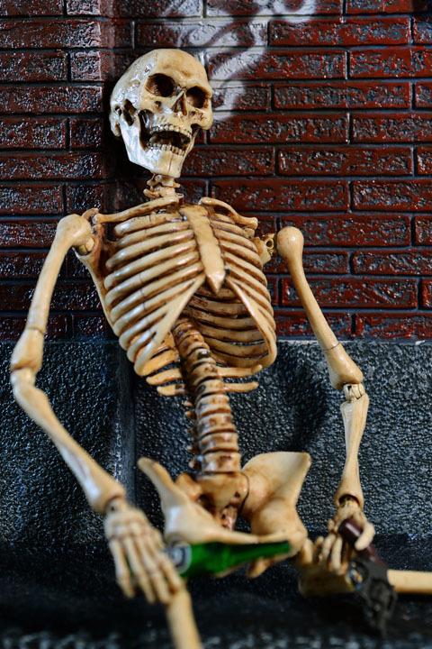 Human Skeleton Body 20 0028
