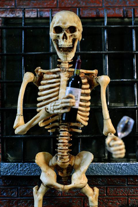 Human Skeleton Body 20 0031