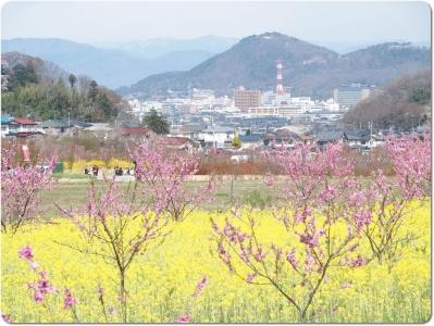 mini_1114_sinobuyama_P4086834.jpg