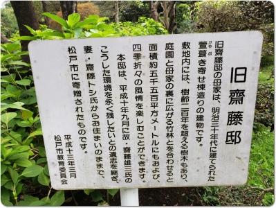 mini_6616_saito_20200725_101539.jpg