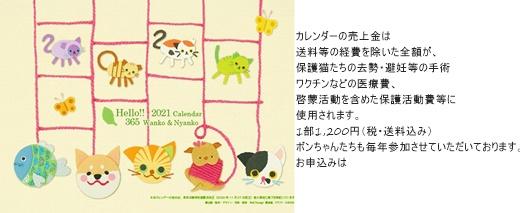 cats11_202102082234519ad.jpg