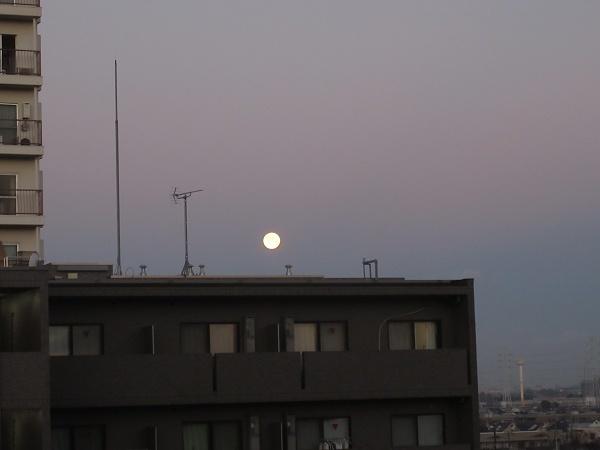 210129up01朝起きたら西の空に綺麗なお月様