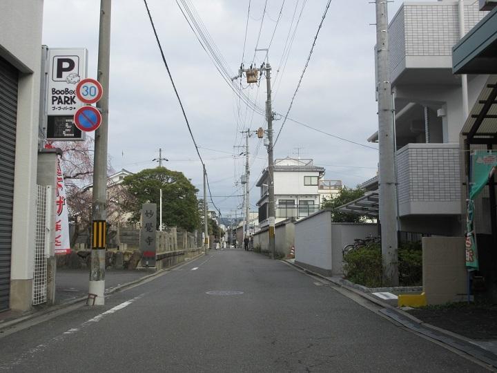 741-5.jpg