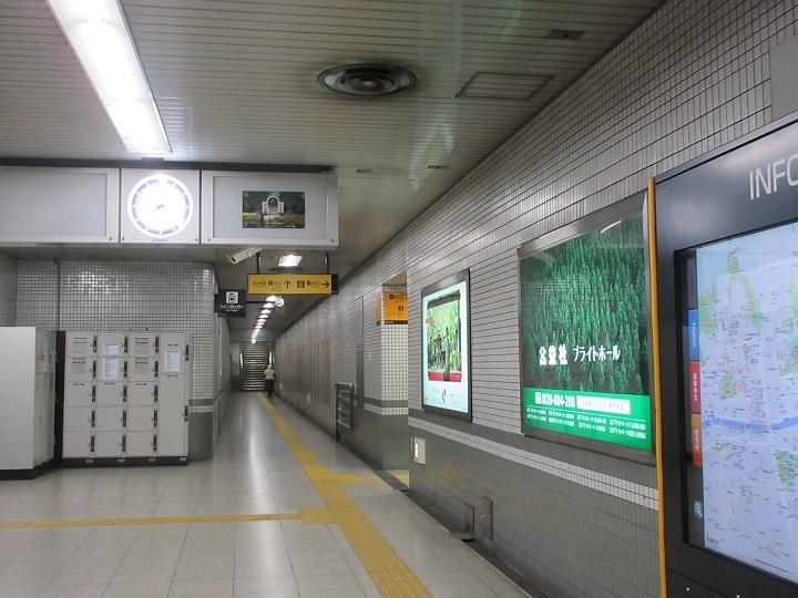 chishiro-4.jpg