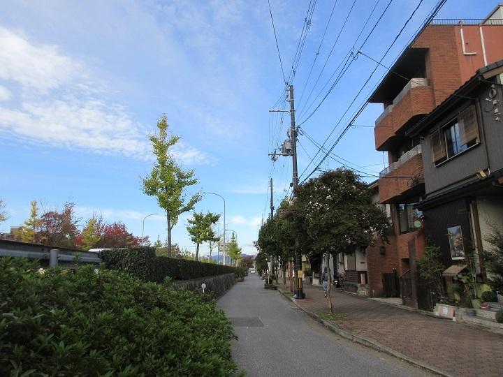 chishiro-7.jpg