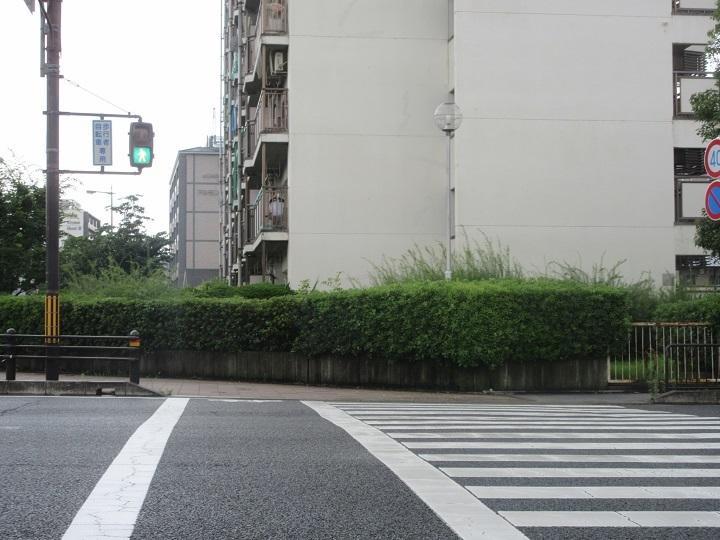 maruhashi-9.jpg