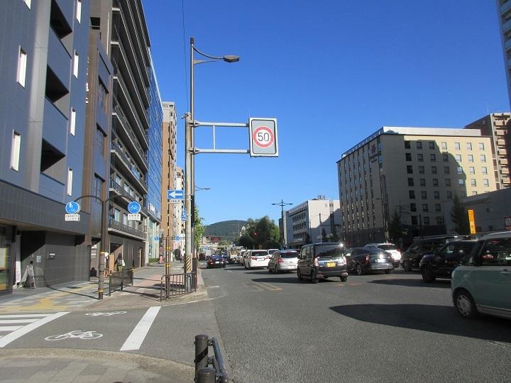 midorinasu-3.jpg