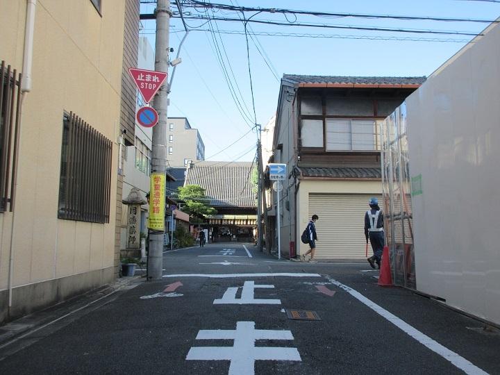 midorinasu-7.jpg